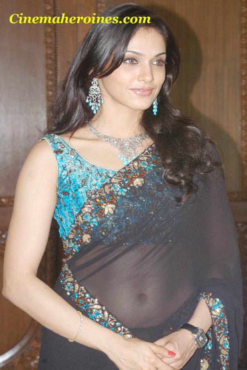 Sexy transparent black saree picsof spicy heroine Isha Koppikar, ...